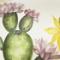 CACTUS FLOWER EVA APPLE OF DESIRE